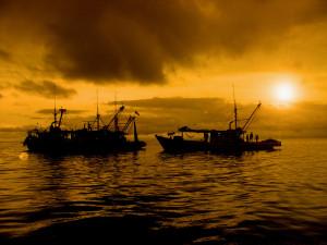 The fishermen story