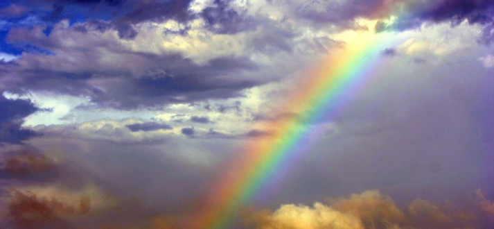 rainbow-FI